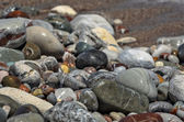 Closeup view of wet beach pebble — Stock Photo