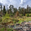 Stock Photo: Garbage dump in forest