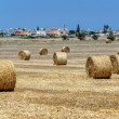 Field with haystacks — Stock Photo