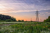 High voltage power line in flower meadow — Stock Photo