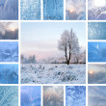 Winter collage — Stock Photo #12378484