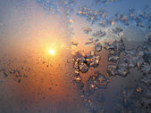 Ice pattern and sunlight on winter glass — 图库照片