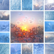 Winter collage — Foto Stock #12652027