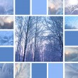 Winter collage - Stock Photo