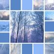Winter collage — Stock Photo #12872786