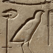 Stock Photo: Closeup of ancient egypt images and hieroglyphics
