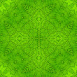 Green leaf abstract pattern — Stock Photo