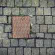 Paving stones background with metal plate — Stock Photo #38893511