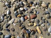 Sand background with sea pebbles — Foto de Stock