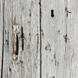 Very old wooden door with handle — Stock Photo