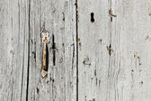 Very old wooden door with handle — Стоковое фото