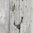 Vintage wooden door — Stock Photo