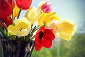 Bouquet of colorful spring tulips in a vase — Stock Photo