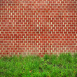 Brick wall and green grass background — Stock Photo #50866057