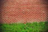Brick wall and green grass background — Stock Photo