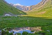 Jeziorko doliny górskie — Zdjęcie stockowe