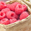 Raspberry — Stock Photo #27795795