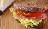 Büyük sandviç — Stok fotoğraf