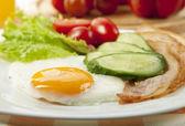 Jajko sadzone — Zdjęcie stockowe