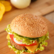 Hamburger — Stock Photo #35559519