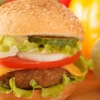 Hamburger — Stock Photo #35559697