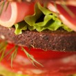 Big sandwich — Stock Photo #36036155