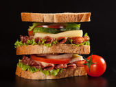 Sandwich — Stock Photo
