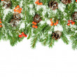 Christmas background. Eve framework - Foto de Stock