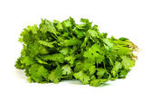Parsley tied in a bunch with twine isolated — Stock Photo