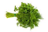 Fresh branches of green dill and Parsley tied isolated — Stock Photo