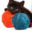Black kitten playing with a red ball of yarn on white background — Stock Photo