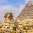Sphinx and the Great Pyramid in the Egypt — Stock Photo #23267362