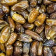 Dates in the street shop in Dubai — Stock Photo