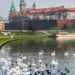 Royalty-Free Stock Photo: Wawel Castle and Wistula . Krakow Poland.
