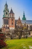 Polen, wawel-kathedraal complex in krakau — Stockfoto