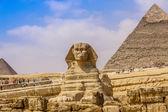 Esfinge y la gran pirámide en el egipto — Foto de Stock