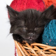 Black kitten playing with a red ball of yarn on white background — Stock Photo #25753861