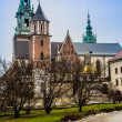Poland, Wawel Cathedral  complex in Krakow — Stock Photo