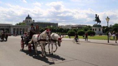 Traditionelle pferd trainer in wien, österreich — Stockvideo
