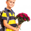 Schoolboy is holding flowers. Back to school — Stock Photo #28654115