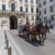 Traditional coach (Fiaker) today traveling tourists in Vienna, A — Stock Photo