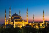 O peru da mesquita azul, istambul — Foto Stock