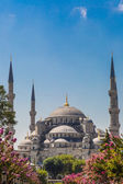 The Blue Mosque, (Sultanahmet Camii), Istanbul, Turkey — Stockfoto