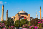 Hagia Sophia, the monument most famous of Istanbul - Turkey — Stock Photo