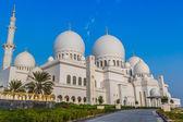 Sheikh zayed camisi ortadoğu birleşik arap emirlikleri — Stok fotoğraf