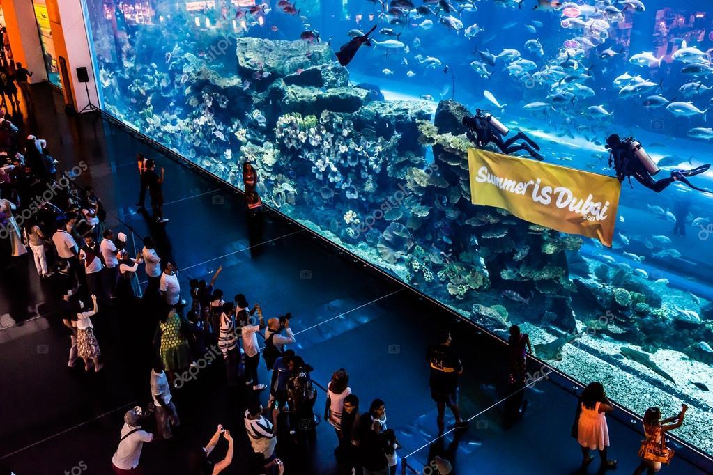 Largest Aquarium Of The World In Dubai Mall Stock