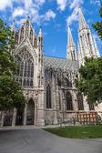 Famous Votivkirche, Votive Church — Stock Photo