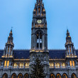 Tall gothic building of Vienna city hall, Austria — Stock Photo