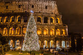 Coliseum of Rome, Italy on Christmas — Foto Stock