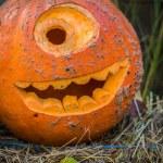 Halloween pumpkin — Stock Photo #33131099